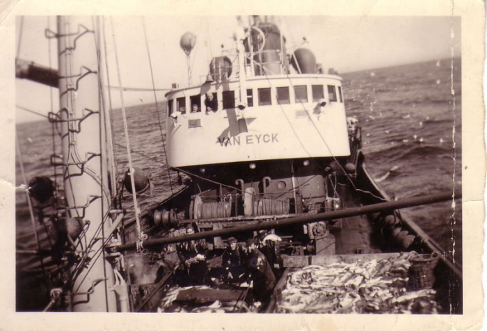 Bemanning op voordek O.293 Van Eyck (Bouwjaar 1951) verwerkt vangst