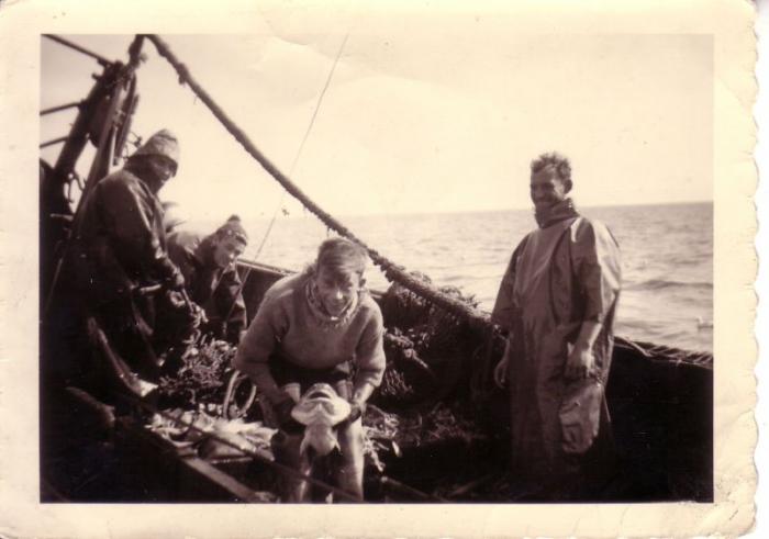Kabeljauwvangst op plankenvisser