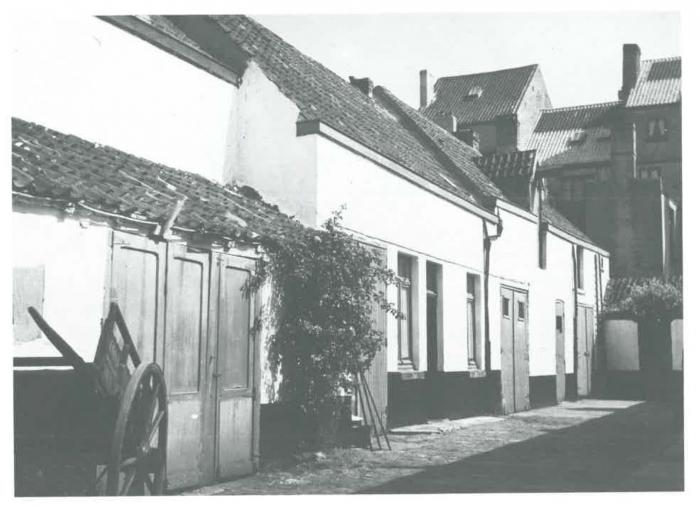Van Caillie (1989, pl. 177)