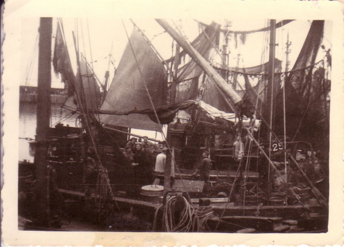 Garnaalvissersvaartuigen in haven Zeebrugge.
