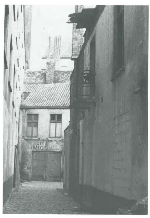 Van Caillie (1991, pl. 178)
