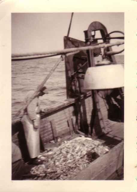 Povere vangst in de kreefteput