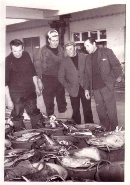 Visveiling in vismijn Zeebrugge
