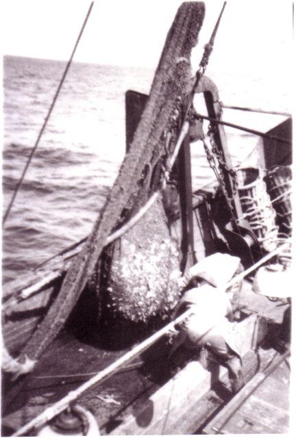 Binnenzetten van vangst