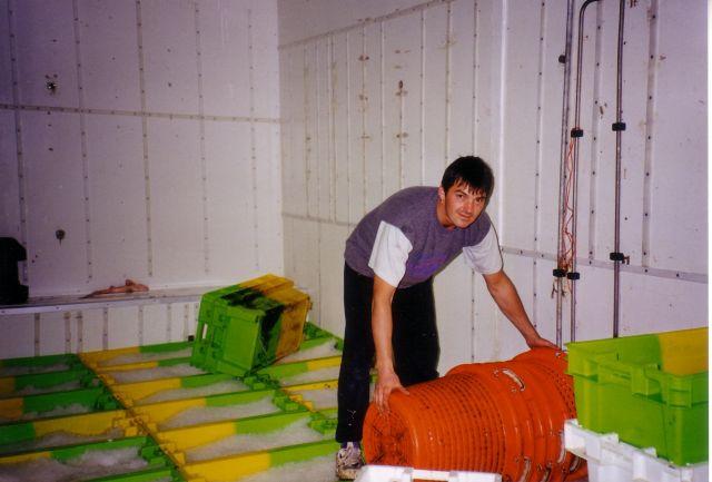Vis wordt met ijs gekoeld en weggestouwd