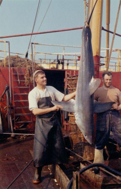 Jan Devoogt (links) en Leopold Desmidt met een Latoer (type haai)