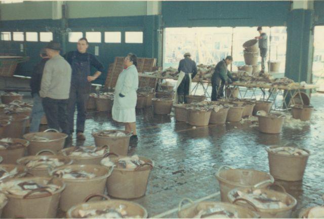 In de vismijn van Zeebrugge rond 1980