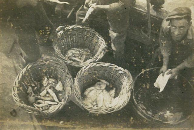 A. Soenen met vangst