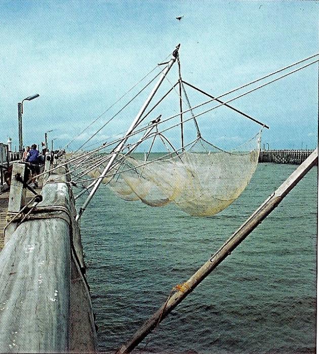 Kruisnetten in de haven van Nieuwpoort