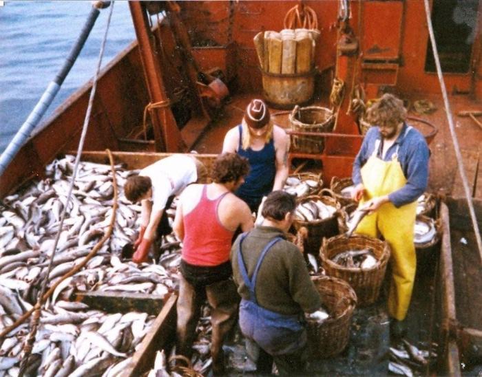 Vissers met vangst aan boord