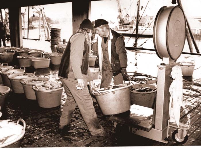 Vis wegen in vismijn