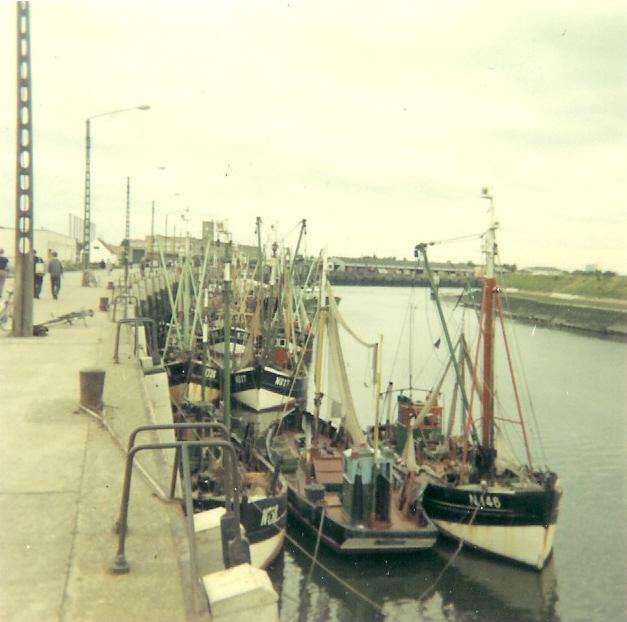 Verschillende schepen in de haven