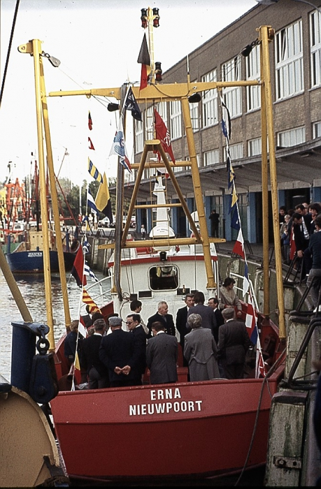 N.49 ERNA