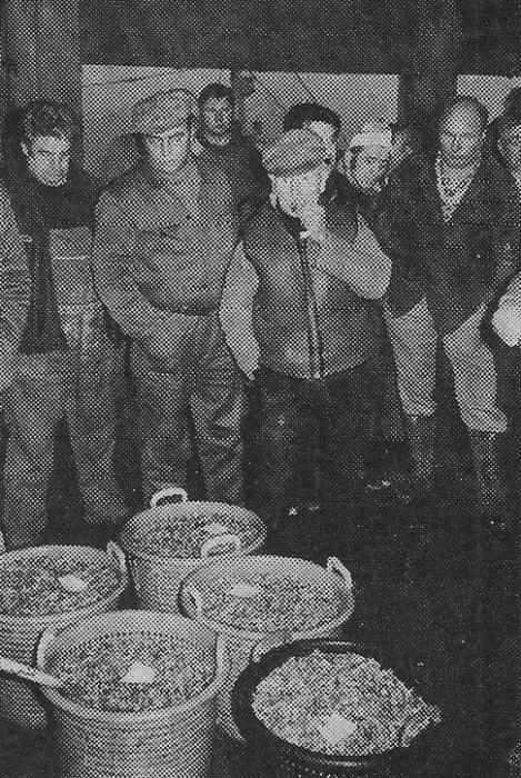 verkoop van de garnalen