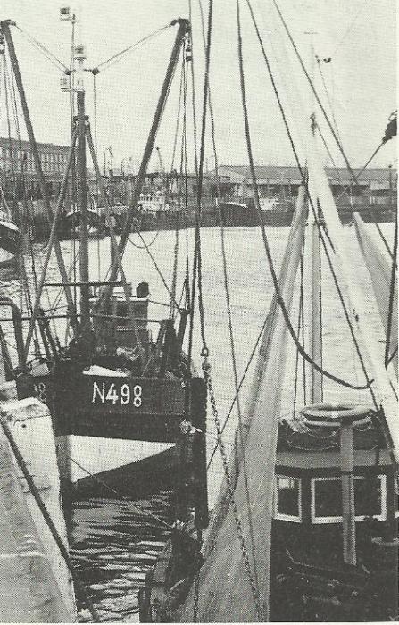N.498 RONDOR