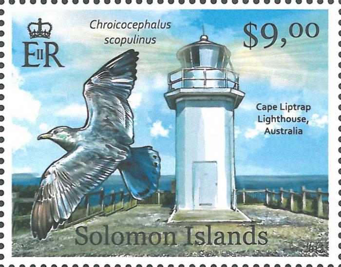 Australia, Cape Liptrap