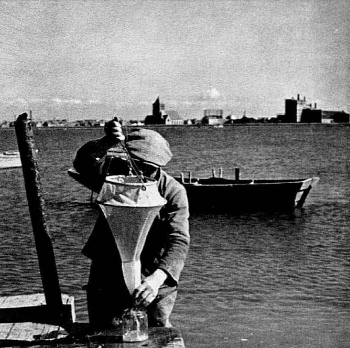 Graf (1957, foto 01)