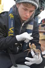 Onderzoeken welk zeegebied de hoogste biodiversiteit heeft (VLIZ). Het Bernardus Technicum Oudenaarde o.l.v. Joris De Winter, Natuur- en groentechnische wetenschappen 3e graad.
