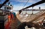 Michael, working on the beam trawler 'Dini', (0.62)