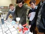 'Hoe de verspreiding van exotische zeeorganismen via ballastwater tegengaan?' (Hogere Zeevaartschool, Antwerpen), De Wijnpers uit Leuven o.l.v. Sofie Thys.