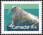 Canadian Postage Stamp (1989): Atlantic walrus
