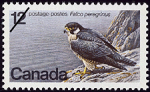 Canadian Postage Stamp (1978): Peregrine Falcon, Falco peregrinus