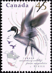 Canadian Postage Stamp (1995): Northern Pintail