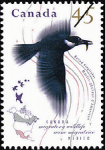 Canadian Postage Stamp (1995): Belted Kingfisher