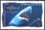 Canadian Postage Stamp (1997): Great White Shark, Carcharodon carcharias
