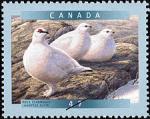 Canadian Postage Stamp (2001): Rock Ptarmigan
