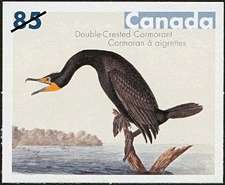 Canadian Postage Stamp (2005): Double-Crested Cormorant