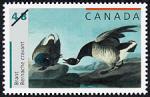 Canadian Postage Stamp (2003): Brant