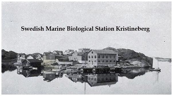The Royal Swedish Marine Zoological Station  (Kristineberg) in 1909