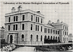 Plymouth Marine Lab in 1908.