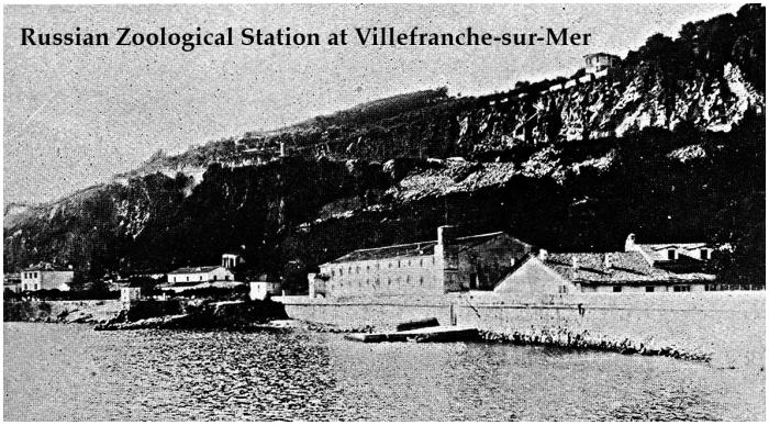Villefranche-sur-Mer in 1908.