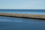 Boat trip - harbour of Gdynia #3