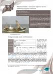 O.29 Broodwinner – Historische mijlpalen van het zeewetenschappelijk onderzoek