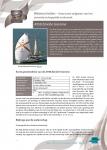 A958 Zénobe Gramme – Historische mijlpalen van het zeewetenschappelijk onderzoek