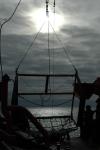 Agassiz Trawl