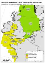 Europese bot - Platichthys flesus (2015)