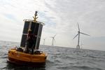 Meetboei in het C-power windpark