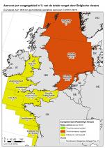 Europese bot - Platichthys flesus (2016)