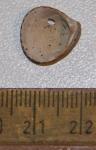 Fossiele kokkelachtige (3)