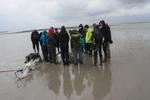 Onderzoek organismen op land en in de zee