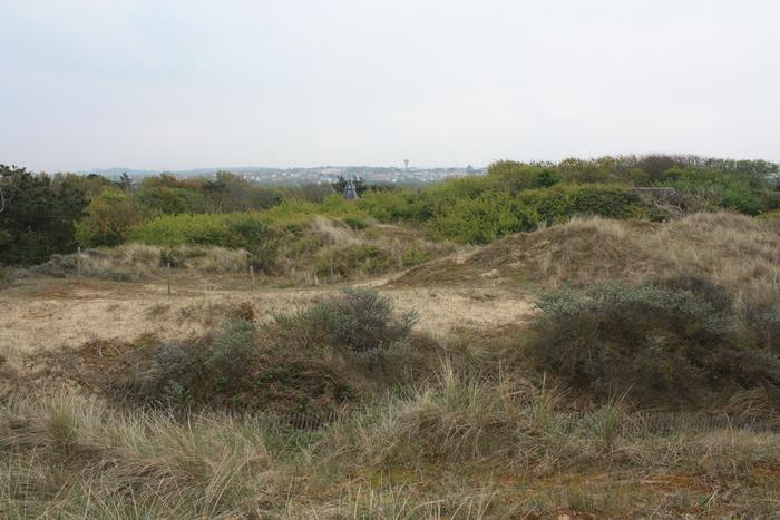 Dunes de la Slack, Wimereux, Frankrijk (2017.05.03)