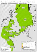 Europese heek - Merluccius merluccius (2017)