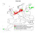 Invasive marine species occurring in European marine harbours