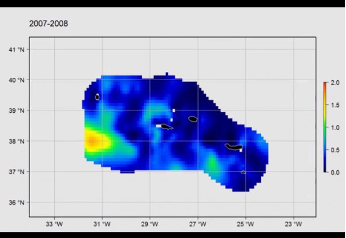 Maps of marine birds, mammals and reptiles around the Azores