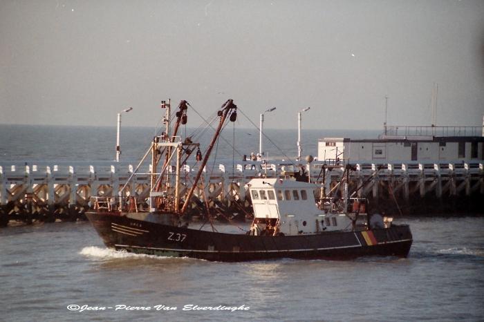 Z 37 Orca