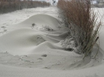 dynamisch zand, author: Nuyttens, Filip